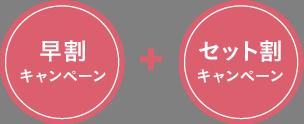 mini_campaign